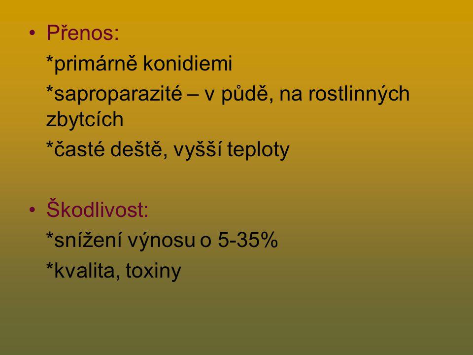 Přenos: *primárně konidiemi. *saproparazité – v půdě, na rostlinných zbytcích. *časté deště, vyšší teploty.