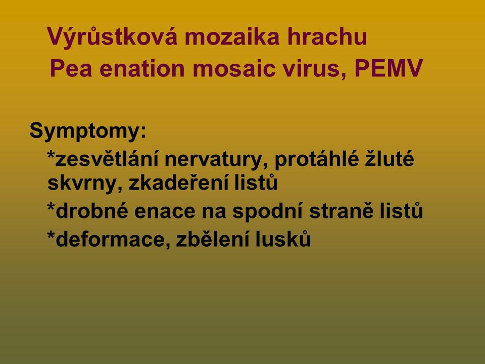 Pea enation mosaic virus, PEMV