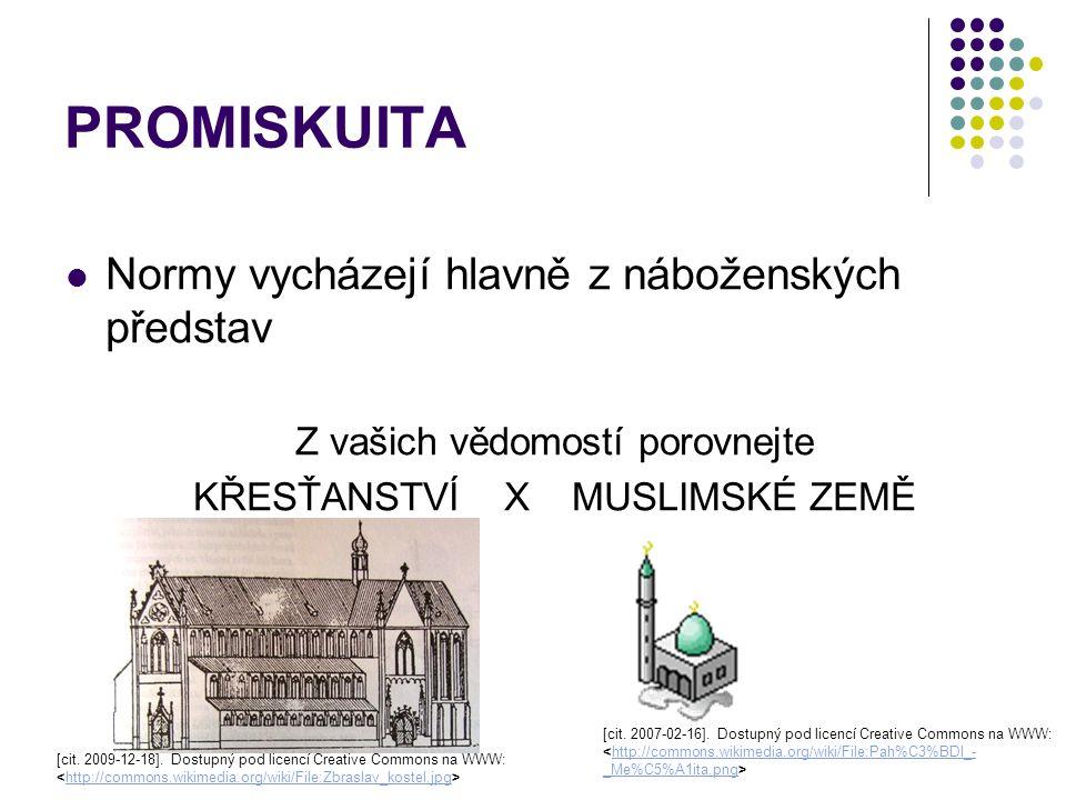 PROMISKUITA Normy vycházejí hlavně z náboženských představ