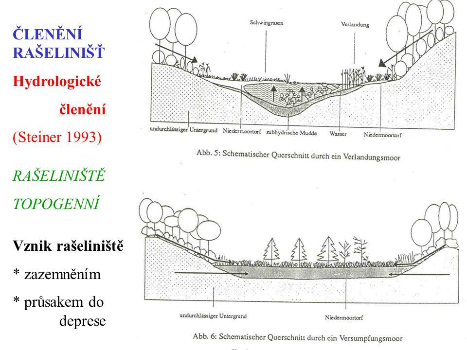 ČLENĚNÍ RAŠELINIŠŤ Hydrologické. členění. (Steiner 1993) RAŠELINIŠTĚ. TOPOGENNÍ. Vznik rašeliniště.