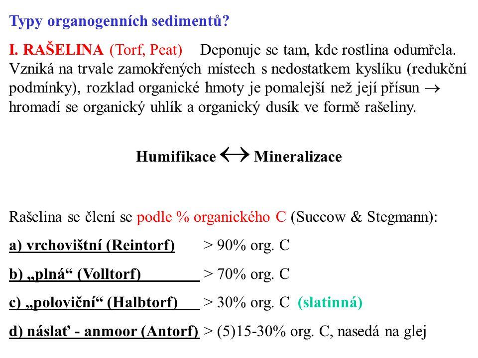 Humifikace  Mineralizace