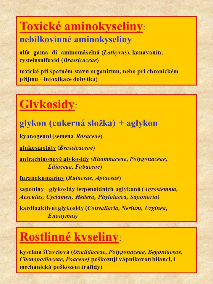 Toxické aminokyseliny: nebílkovinné aminokyseliny