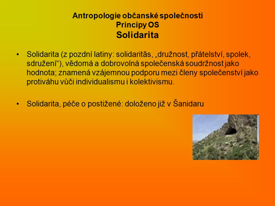 Antropologie občanské společnosti Principy OS Solidarita