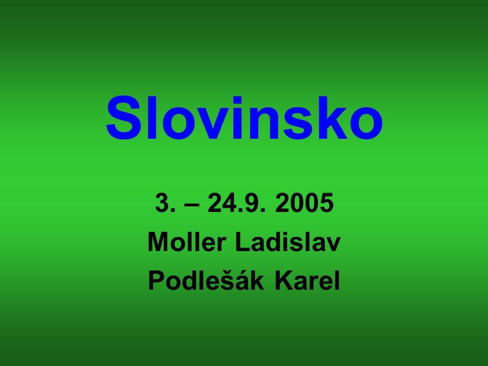 3. – 24.9. 2005 Moller Ladislav Podlešák Karel