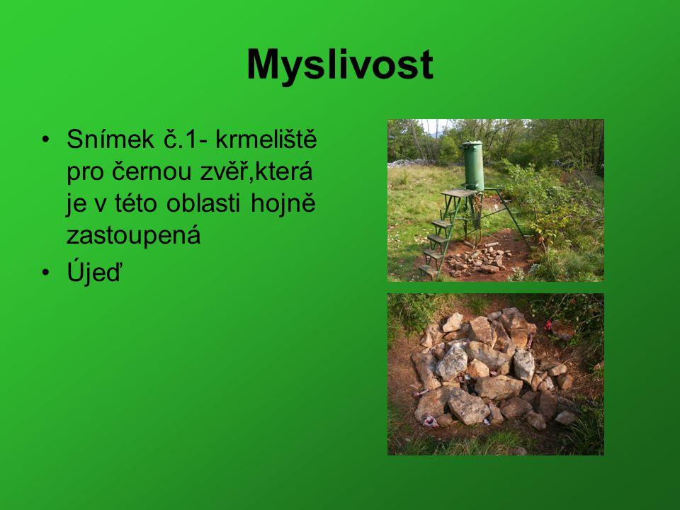 Myslivost Snímek č.1- krmeliště pro černou zvěř,která je v této oblasti hojně zastoupená Újeď