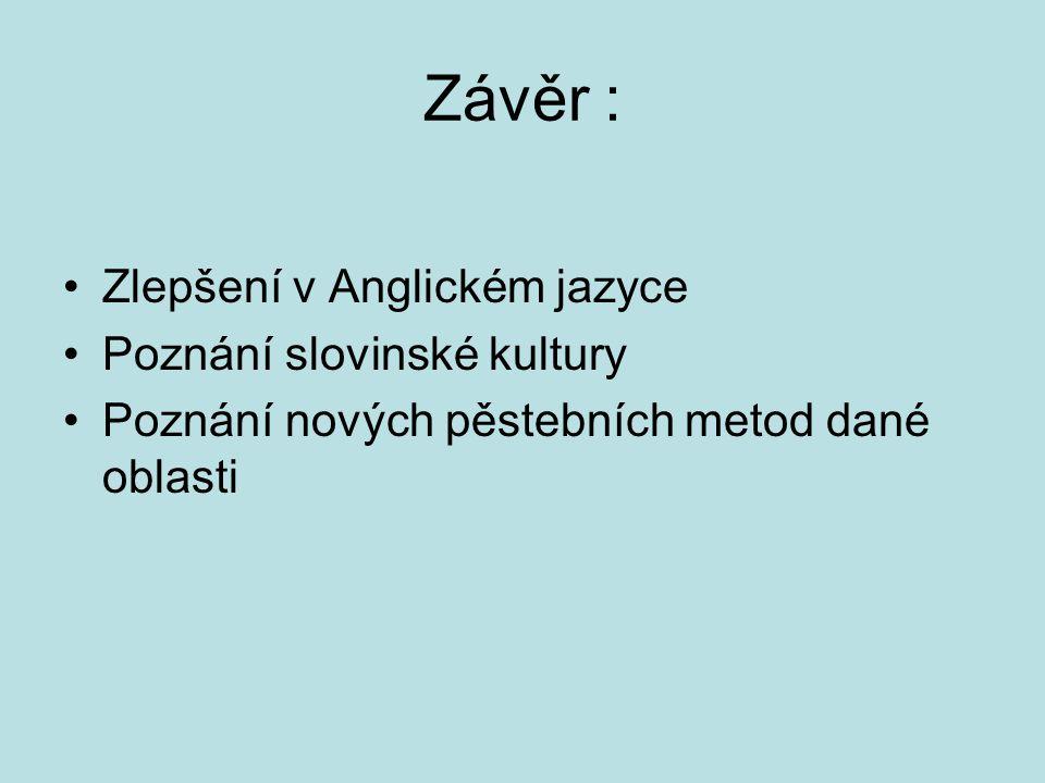 Závěr : Zlepšení v Anglickém jazyce Poznání slovinské kultury