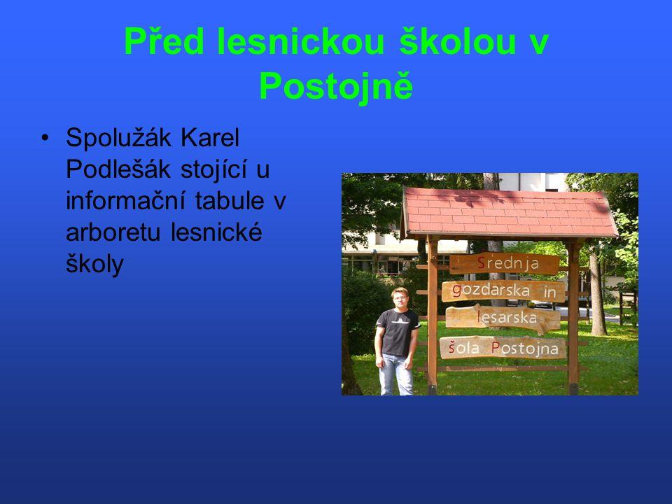 Před lesnickou školou v Postojně