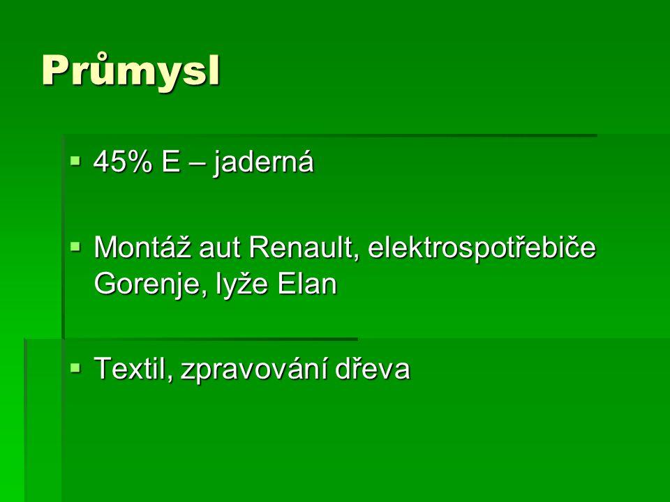 Průmysl 45% E – jaderná. Montáž aut Renault, elektrospotřebiče Gorenje, lyže Elan.