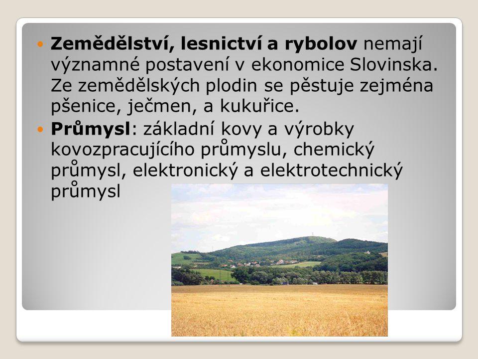 Zemědělství, lesnictví a rybolov nemají významné postavení v ekonomice Slovinska. Ze zemědělských plodin se pěstuje zejména pšenice, ječmen, a kukuřice.