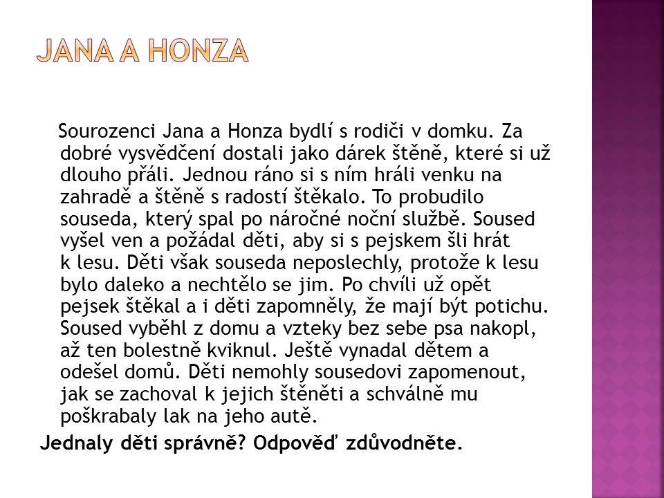 Jana a Honza