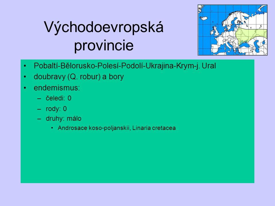 Východoevropská provincie