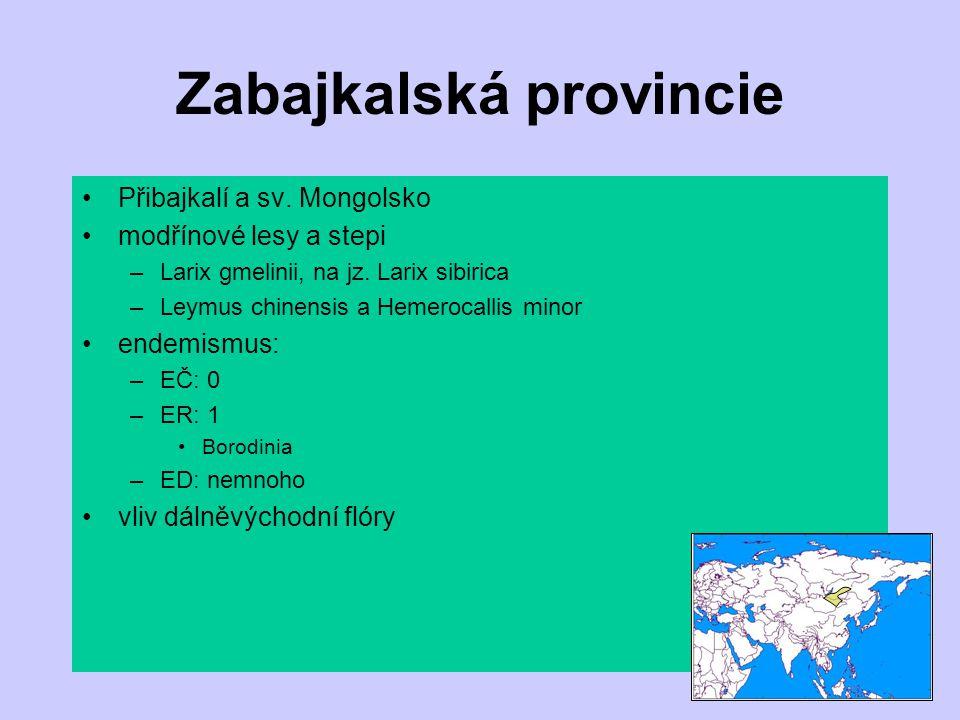 Zabajkalská provincie