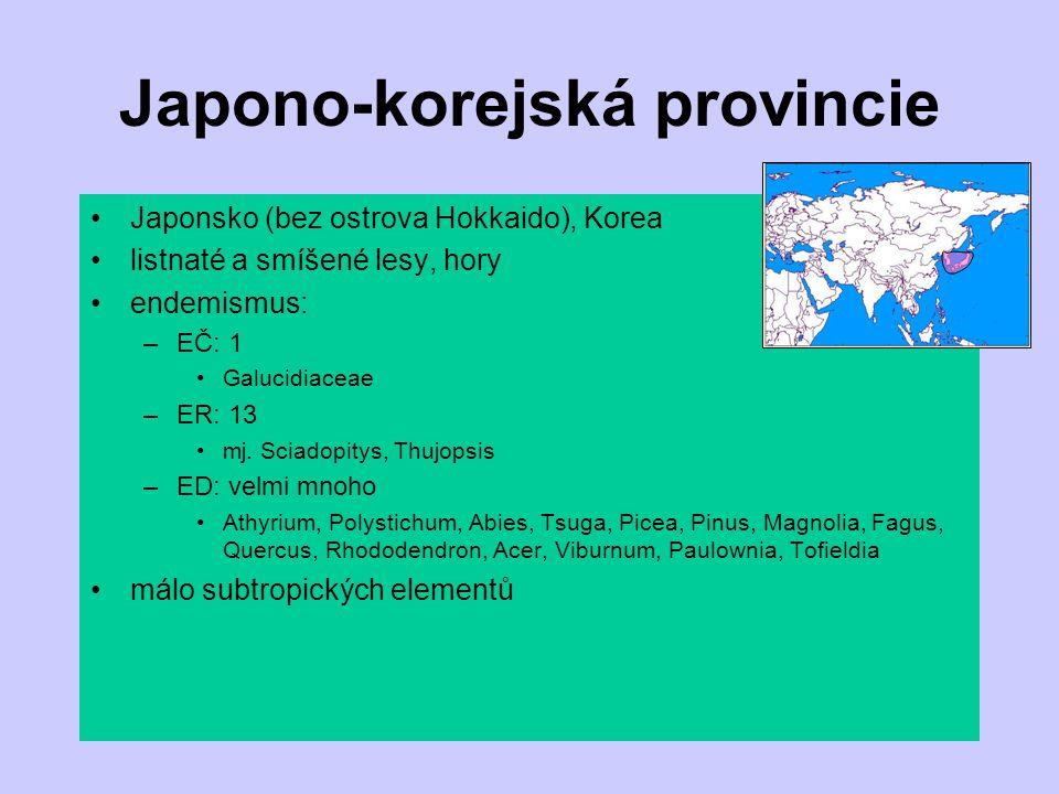 Japono-korejská provincie
