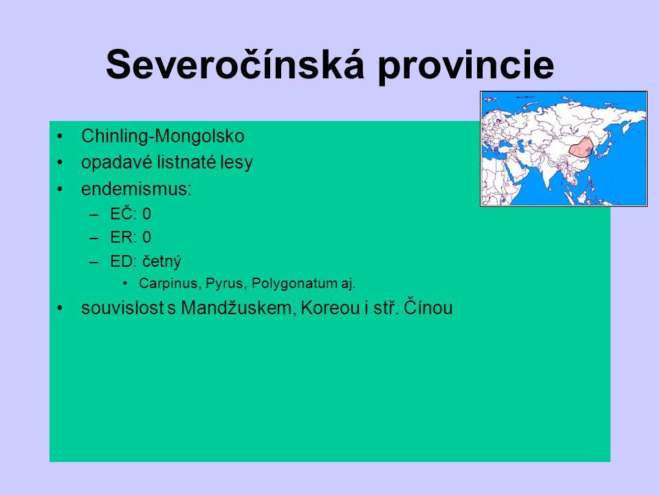 Severočínská provincie