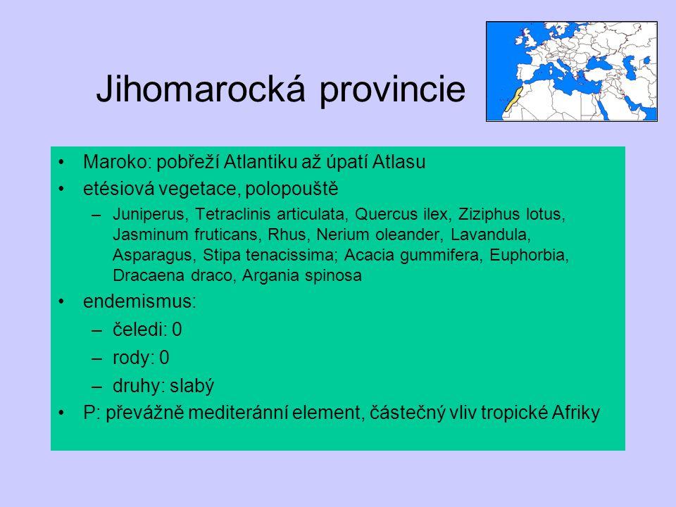 Jihomarocká provincie