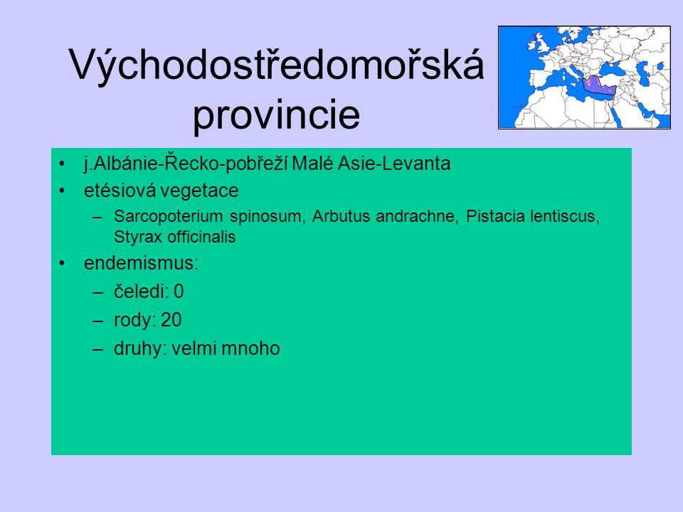 Východostředomořská provincie