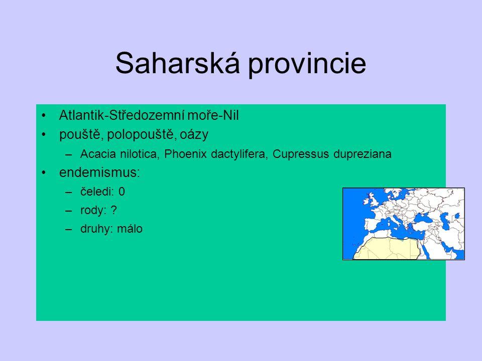 Saharská provincie Atlantik-Středozemní moře-Nil