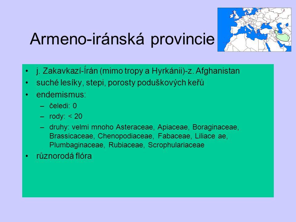 Armeno-iránská provincie