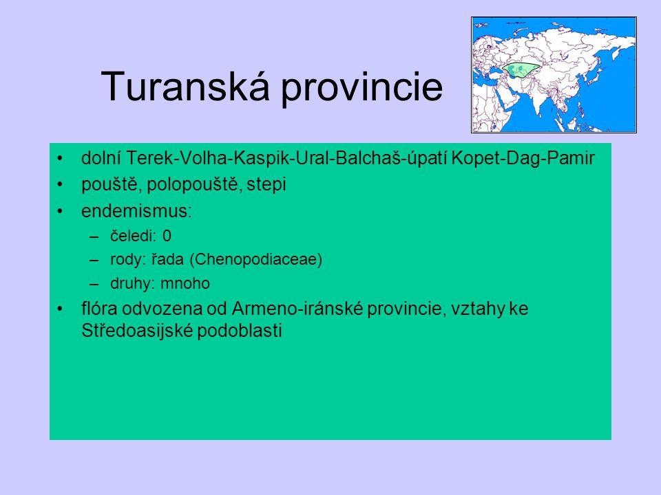Turanská provincie dolní Terek-Volha-Kaspik-Ural-Balchaš-úpatí Kopet-Dag-Pamir. pouště, polopouště, stepi.