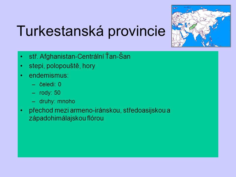 Turkestanská provincie
