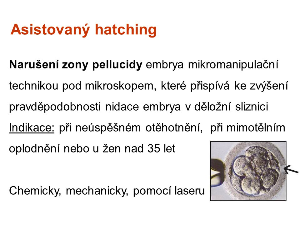 Asistovaný hatching
