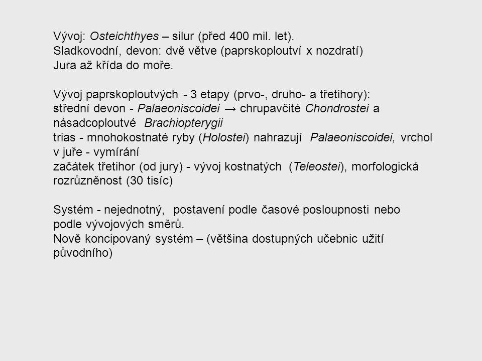 Vývoj: Osteichthyes – silur (před 400 mil. let).