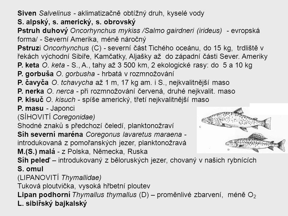 Siven Salvelinus - aklimatizačně obtížný druh, kyselé vody
