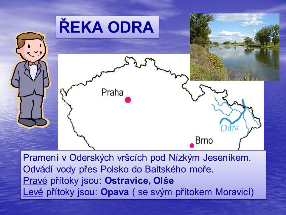 ŘEKA ODRA Pramení v Oderských vršcích pod Nízkým Jeseníkem. Odvádí vody přes Polsko do Baltského moře.