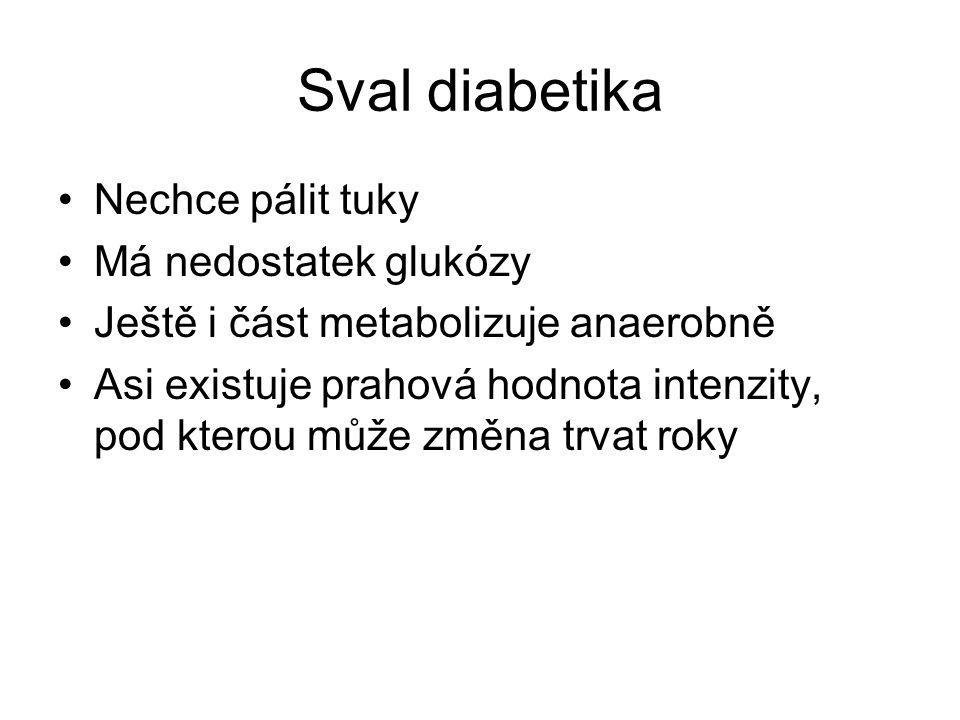 Sval diabetika Nechce pálit tuky Má nedostatek glukózy