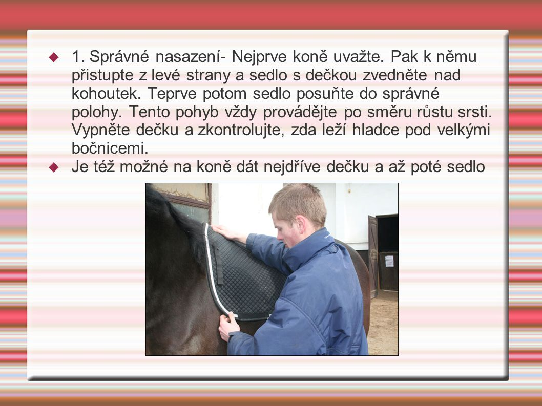 1. Správné nasazení- Nejprve koně uvažte