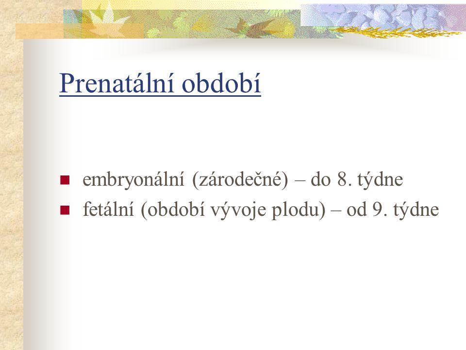 Prenatální období embryonální (zárodečné) – do 8. týdne