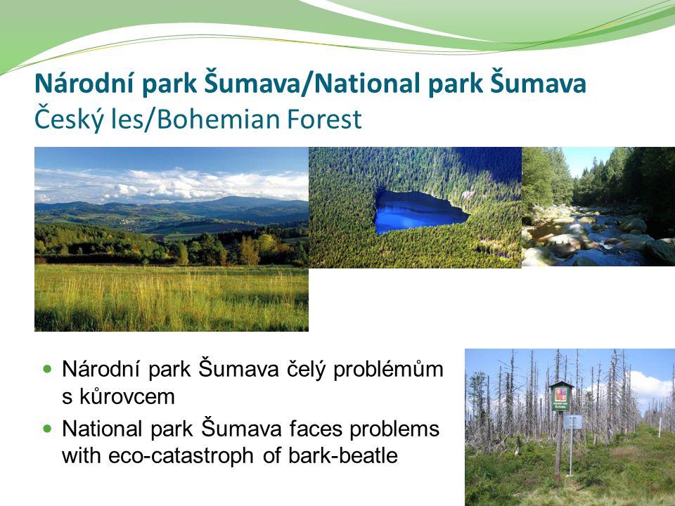 Národní park Šumava/National park Šumava Český les/Bohemian Forest