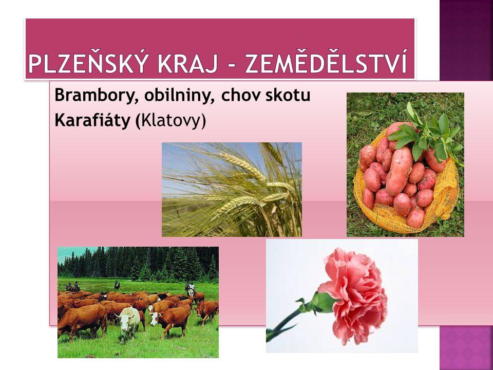 Plzeňský kraj - zemědělství