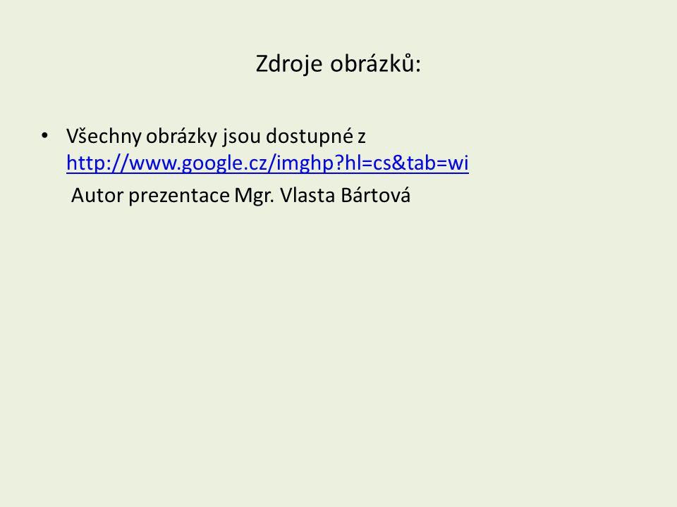 Zdroje obrázků: Všechny obrázky jsou dostupné z http://www.google.cz/imghp hl=cs&tab=wi.