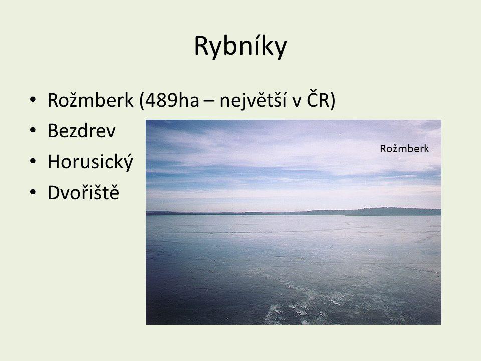 Rybníky Rožmberk (489ha – největší v ČR) Bezdrev Horusický Dvořiště
