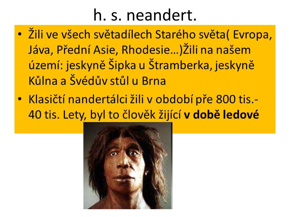 h. s. neandert.