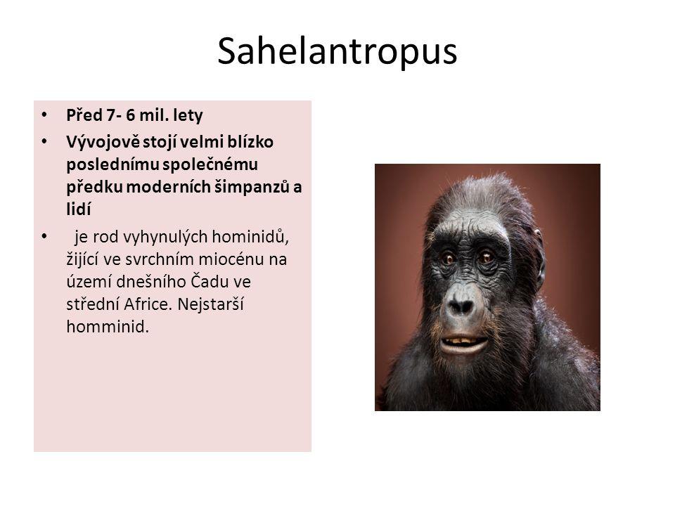 Sahelantropus Před 7- 6 mil. lety