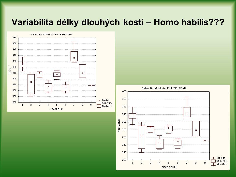 Variabilita délky dlouhých kostí – Homo habilis