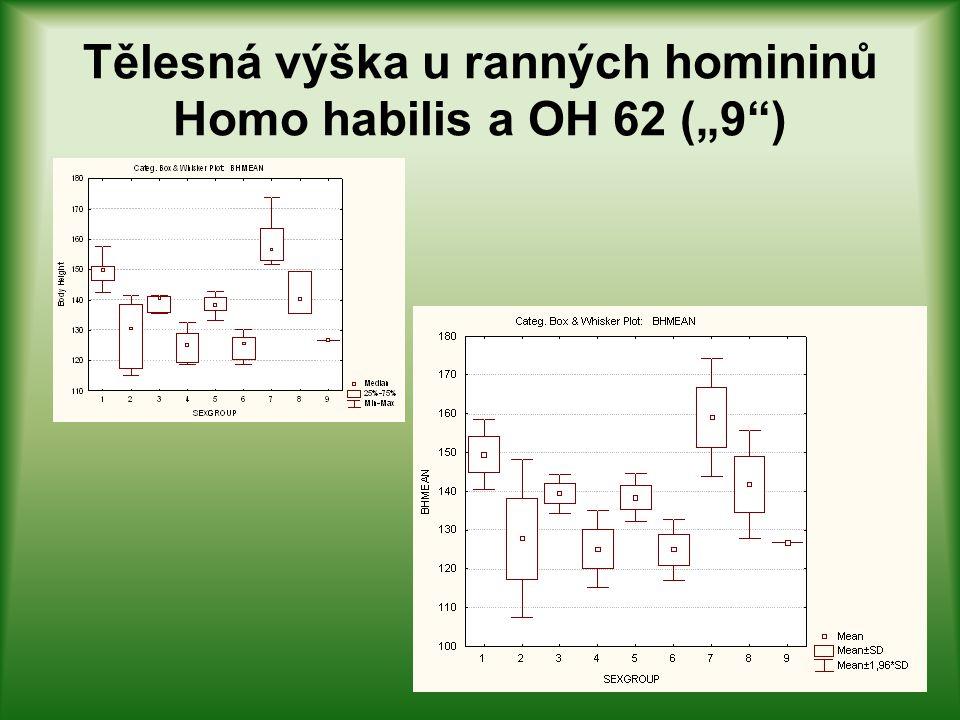 "Tělesná výška u ranných homininů Homo habilis a OH 62 (""9 )"