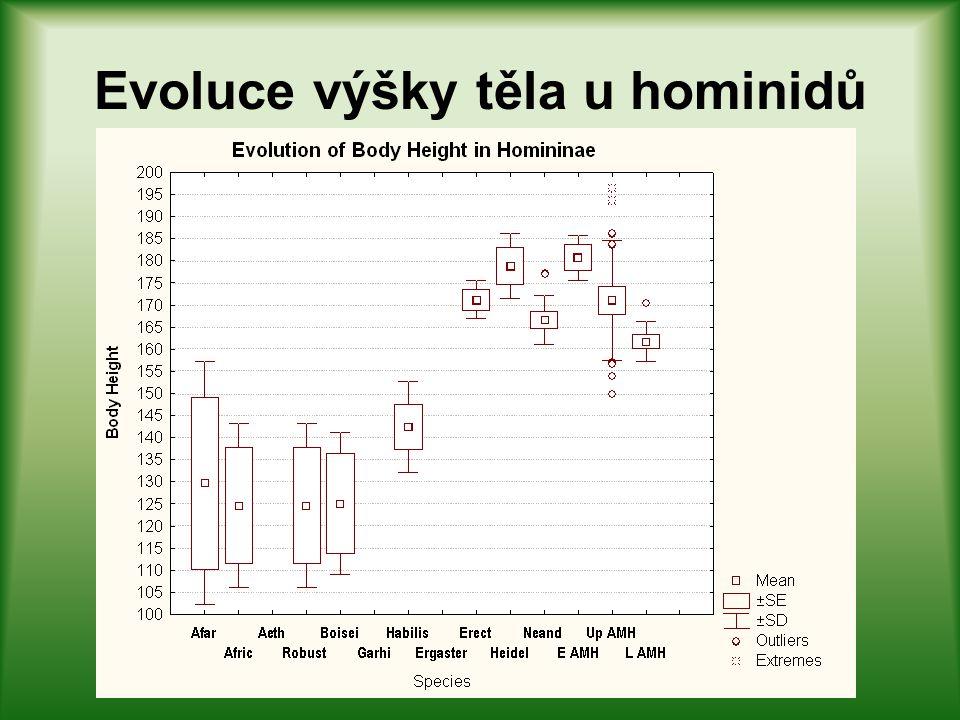 Evoluce výšky těla u hominidů