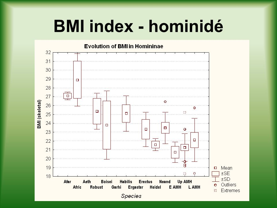 BMI index - hominidé
