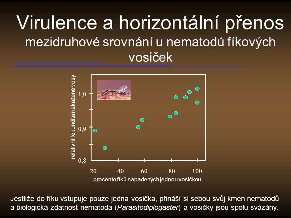 Virulence a horizontální přenos mezidruhové srovnání u nematodů fíkových vosiček