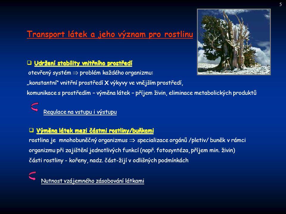 Transport látek a jeho význam pro rostlinu