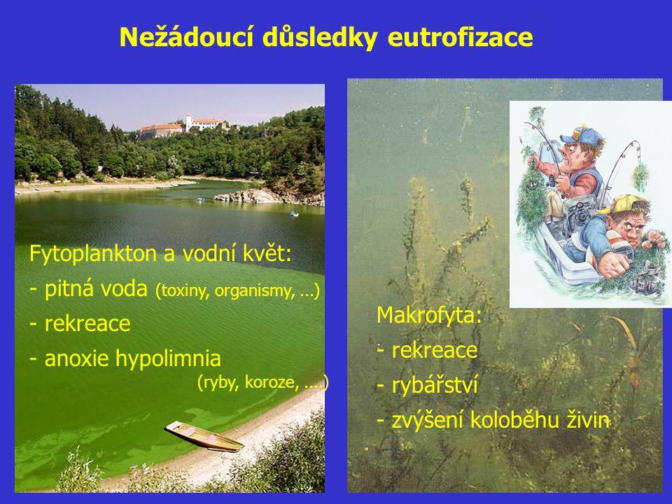 Nežádoucí důsledky eutrofizace