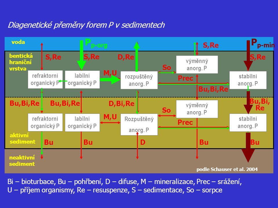 refraktorní organický P refraktorní organický P