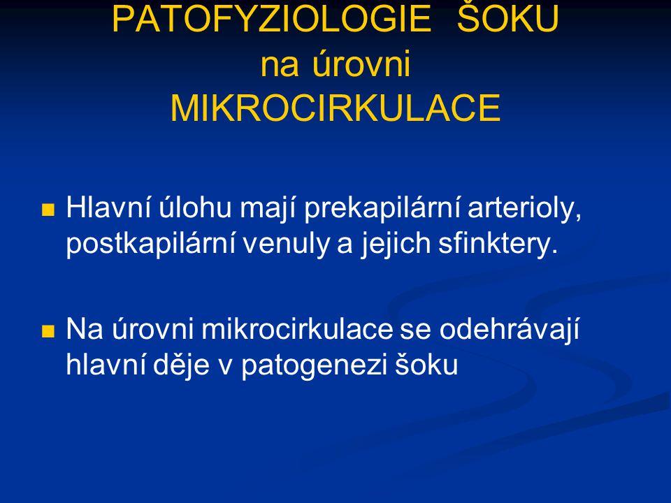 PATOFYZIOLOGIE ŠOKU na úrovni MIKROCIRKULACE