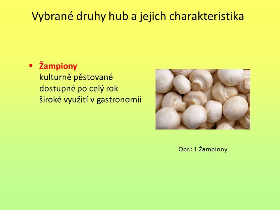 Vybrané druhy hub a jejich charakteristika