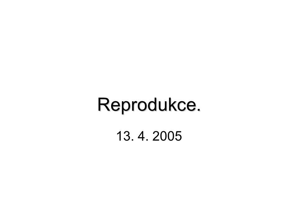 Reprodukce. 13. 4. 2005