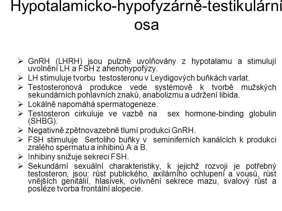 Hypotalamicko-hypofyzárně-testikulární osa