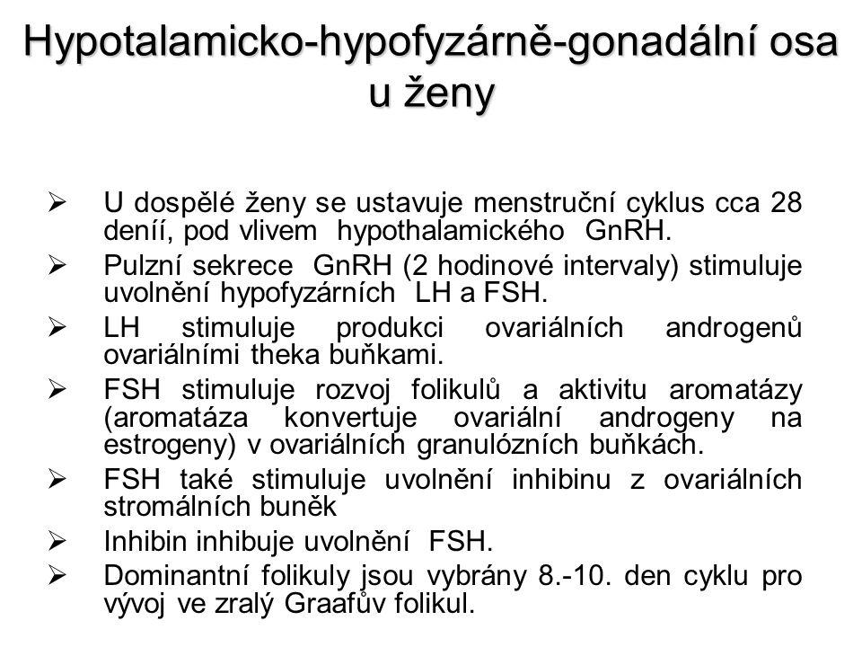 Hypotalamicko-hypofyzárně-gonadální osa u ženy